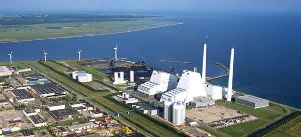 Крупнейшая угольная ТЭС Дании перешла на биотопливо
