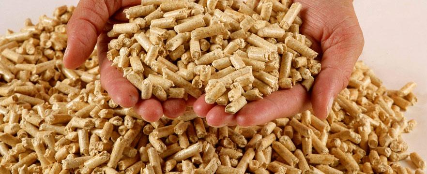 В Канаде будут разрабатывать стандарты на твердое биотопливо